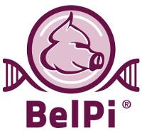 BelPi Genetics Logo